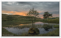 ABC_3823 (Lynne J Photography) Tags: cumbria lakedistricy kellyhalltarn sunrise nikon tarn reflection sunset lonetree lone tree waterfalls longexposure tomgillfalls
