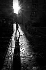 Paseo (Paco Herrero) Tags: spreader paseo urbana calle street sombra silueta valencia bw bn
