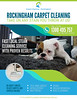 FinalizedFlyer2 (fahimkhan11) Tags: rockingham wa australia 6168 carpetcleaningservice tileandgroutcleaning upholsterycleaning steamcleaning mattresscleaning stain odour removal