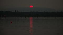 Cowichan Forest Fire Sun (Michelle de Vries) Tags: sun sunset red smoke haze sea estuary britishcolumbia canada