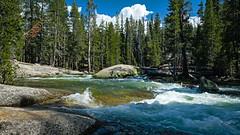 Tuolumne River (San Francisco Gal) Tags: yosemitenationalpark yosemite tuolumneriver river water rapids rock granite ngc npc