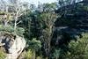 20170709-13-Bluff River Gorge walk (Roger T Wong) Tags: 2017 australia bluffrivergorge buckland rogertwong sel1635z sony1635 sonya7ii sonyalpha7ii sonyfe1635mmf4zaosscarlzeissvariotessart sonyilce7m2 tasmania bushwalk caves cliff erosion gorge hike outdoors sandstone tramp trek walk