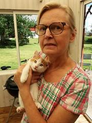 Now we know how to act as cat guards. (HAKANU) Tags: sweden småland kronoberg moheda slätthög berg countryside family wallén bergsätthög cat pussy agneta agnetawallén portrait pussycat