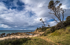 Two trees and a glimpse of the sea. (OzzRod) Tags: pentax k1 irix15mmf24blackstone landscape seascape sky clouds coldfront offshore trees shoreline coast cuttagee