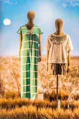 shop window (Lorenzo Tombola) Tags: vetrina milano milan moda dummies shopwindow manichini