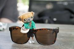 Happy Summertime! (omgdolls) Tags: lundby lps bear hybrid doll littlestpetshop pug
