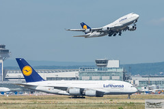 Lufthansa Boeing 747-430 D-ABVM (718831) (Thomas Becker) Tags: lufthansa dlh boeing b747 747 430 400 744 dabvm staralliance cn 29101 ln 1143 280198 070298 lh442 detroit dtw airbus a380841 a380800 a380 a388 daime johannesburg fraport flughafen airport aeroport aeropuerto aeroporto fra eddf frankfurt plane spotting aircraft airplane avion aeroplano aereo 飞机 vliegtuig aviao аэроплан samolot flugzeug germany deutschland hessen rheinmain nikon d7200 nikkor 80400g vrii dx raw gps aviationphoto cthomasbecker 170718 departure geotagged geo:lat=50039523 geo:lon=8596970 aerotagged aero:airline=dlh aero:man=boeing aero:model=747 aero:series=400 aero:tail=dabvm aero:airport=eddf