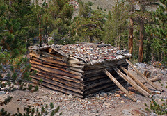 Miner's Cabin, Twin Lakes, California (day_williams) Tags: miner cabin forest trees sierras mountain minerscabin california twinlakes