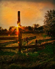 Country Sunset (Dave Linscheid) Tags: sunset country rural fence abandoned farm agriculture texture textured watonwancounty mn minnesota usa toolwizphotos