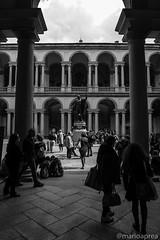 Pinacoteca di Brera (Mario Aprea) Tags: marioaprea milano pinacoteca pinacotecadibrera arte museo street building blackandwhite monument