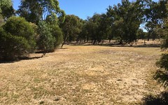lot 163 Day Street, Henty NSW
