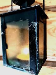 webglow (docmattk) Tags: web spider lamp candle colour wood orange samsung mobile