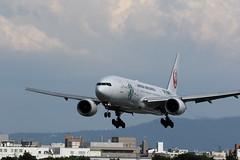 UP3A4857 (ken1_japan) Tags: 大阪国際空港 伊丹空港 itm 伊丹スカイパーク スカイランドハラダ japan osaka airplane ana jal canon 7dmkⅱ ef70200mm f28lisiiusm