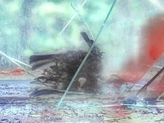 Exploration Lebensborn (Spring of Life): Death Trap for Birds (one of many dead birds there) Todesfalle für Vögel - einer von mehreren. Sonniger Tag, der Vogel hört nichts mehr, auch nicht das Schlagen der Fenster und Türen, es zieht wie im Vogelhaus (hedbavny) Tags: unterwegs vogel bird dead tot tod scheibe glas spiegel mirror crash accident unfall vogelschutz umweltschutz splitter scherben zersprungen spiegelung reflection broken zerbrochen gebrochen abgebrochen bruch bruchglas glasbruch green grün red rot blutrot blut blood bloody blau blue graffiti feder feather fenster window fensterscheibe schmutz dirt exploration erkundung geschichte history lebensborn abandoned decay verfall lostplaces geschlossen verlassen closed baum tree stille lungenheilanstalt silence sonne sun sonnig sommer summer hochsommer midsummer hedbavny ingridhedbavny austria österreich loweraustria niederösterreich