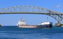 Tim S. Dool (GLC 392) Tags: algoma central marine algo tim s dool bulk lake ship freighter blue water bridge port huron mi michigan sky st clair river downbound down bound
