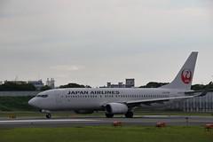 UP3A4604 (ken1_japan) Tags: 大阪国際空港 伊丹空港 itm 伊丹スカイパーク スカイランドハラダ japan osaka airplane ana jal canon 7dmkⅱ ef70200mm f28lisiiusm