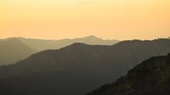 golden time (Flutechill) Tags: mountain nature hill landscape fog forest scenics sunset outdoors morning dawn asia tree sky sunrisedawn mist mountainpeak mountainrange backgrounds travel chiangmai thailand doiphahompoknationalpark nationalpark