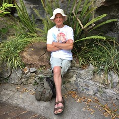 Ray waiting for the taxi (kim.barrett723) Tags: santa margherita ligure sml italy italian riviera