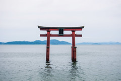 Takashima, Japan (inefekt69) Tags: takashima japan 高島 日本 asia nikon d5500 torii gate shrine temple shinto lake biwa 琵琶湖 water shirahigeshrine 白鬚神社
