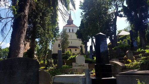 Biserica din Deal (38)