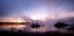 Tutira mai nga raupo (ajecaldwell11) Tags: cloud mist stars hawkesbay newzealand venus ankh astrophotography dawn water sky fog clouds caldwell sunrise light