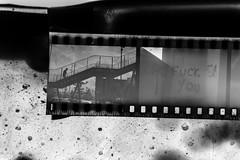Sviluppando un Rullino (andrea.fogliacco) Tags: rosso film pellicola ilford fp4 plus sviluppo rullini vintage black white develop developed reflex old school vecchia scuola