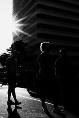 The Wicked Sunlight (R*Wozniak) Tags: blackwhite bw blackandwhite milwaukee street shadows silhouette sunburst nikon nikond750