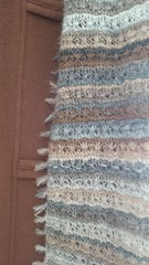 15e (siouxian) Tags: daisystitch scarf einband lace