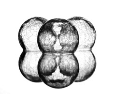 Reflection & Refraction (Karen_Chappell) Tags: reflection refraction reflections glass three 3 bw blackandwhite white crackle orb round sphere circle stilllife abstract