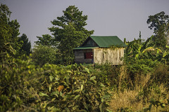Khmer hut (Keith Kelly) Tags: anlongklong asia cambodge cambodia kh kampuchea keithkelly khmer krakor pursatprovince southeastasia bush country countryside farmland house hut keithakelly rural sunrise trees wooden pouthisat