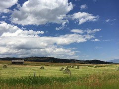 Home Field (Rock Water) Tags: montana summer bucolic