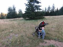 stroller pusher (carolyn_in_oregon) Tags: troutlake washington jimmyandreasweddingweekend jacob