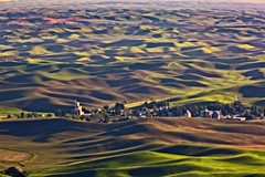 Dimpled Palouse (Alan Amati) Tags: amati alanamati america american usa us wa washington pacificnorthwest nw northwest palouse thepalouse steptoe steptoebutte colfax rural fields dimples dimpled hills rolling farms farm town field sunset afternoon landscape lateafternoon late light shadow country grain elevator wheat topf25