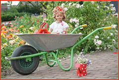 Der Wagen ist vorgefahren ... (Kindergartenkinder) Tags: seppenrade sanrike tivi rosengarten blumen personen kindergartenkinder garten blume park frühling annette himstedt dolls milina annemoni jinka