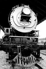 NP 2164 (Laurence's Pictures) Tags: north dakota railroad museum train railway transportation freight bismarck burlington northern pacific soo line historic car