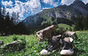 alpine chucks (kevinmsutton) Tags: chuck taylor switzerland alps grass valley clouds sky mountains chucks