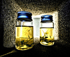 Herbs (Steve Taylor (Photography)) Tags: jar herb sample block museum brown bright blue yellow glass metal asia city singapore leaves bottle cinderblock nationalmuseumofsingapore preserved light