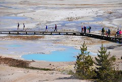 boardwalk (ekelly80) Tags: wyoming yellowstone yellowstonenationalpark nationalparkservice nps june2017 roadtrip keisgoesusa optoutside findyourpark norrisgeyserbasin geyser thermal geothermal hotsprings view scenery above lookdown pools blue steam boardwalk colors water