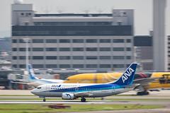 Itami Airport 2017.7.19 (4) JA302K / ANA WINGS' B737-500 (double-h) Tags: omd em1markii omdem1markii lumixgxvariopz45175mmf4056asphpowerois rjoo itm osakaairport itamiairport 大阪空港 伊丹空港 airplane 飛行機 伊丹スカイパーク itamiskypark ja302k anawings ana anaウイングス b737 b737500
