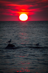 Unusual Sunset (skram1v) Tags: smokey sunset forestfires bc haze july1517 lake winnipeg manitoba