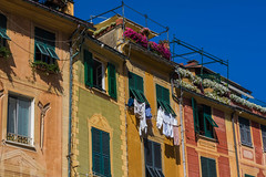 Roof gardens, washing lines and shutters (@bill_11) Tags: portofino italy liguria places
