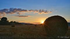 JUI_9816 (Bob_Reinert) Tags: soleil sun sunset nuages clouds coucher paysages landscape paille bottes