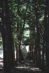 道東-257 (yuhsuan liu) Tags: portrait 人像 自然景觀 建築 旅遊 nature architecture