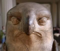 Horus-falcon limestone statue, Egypt, Roman period - British Museum, London (edk7) Tags: nikond50 edk7 2007 uk england london bloomsbury holborn britishmuseum horusfalconlimestonestatueegyptromanperiod sculpture stonecarving museum ancient ea1420 head statue