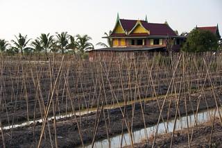 singburi - thailande 33