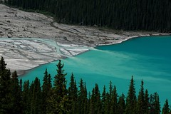 Blending (Adam Wang) Tags: landscape lake water nature river travel tree outdoors banff scenic peyto