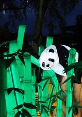 Chinese Lantern Festival (farmspeedracer) Tags: festival night park light illumination germany china art handcraft tradition laternenfest juli july panda bear bambus green summer 燈節 灯节 mood dark animal lantern