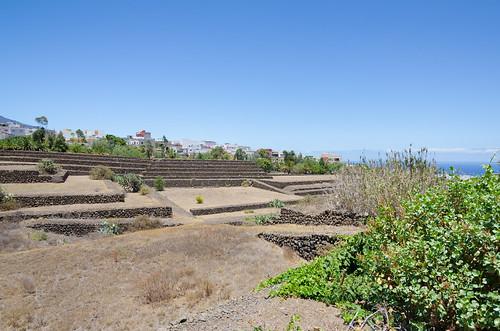 Piramides de Guimar III