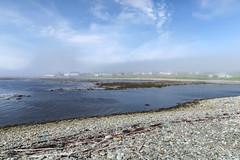 Blurry houses during the fog and sun of summer afternoons in coastal Newfoundland. (Tim Kiser) Tags: 2017 20170711 avalonpeninsula avalonpeninsulalandscape batteryroad gulfstream img0981 july july2017 labradorcurrent newfoundland newfoundlandandlabrador newfoundlandandlabradorlandscape newfoundlandlandscape trepassey trepasseybay trepasseyharbor trepasseyharbour trepasseynewfoundland trepasseynewfoundlandandlabrador trepasseylandscape afternoonfog algae bay bayshore beach beachrocks coastalfog distanthouses easternnewfoundland fog fogandsun foglandscape fogrollingin foggylandscape houses landscape marinealgae marinefog oceanfog partlycloudy rocks rockybeach seaweed shore shorelandscape shoreline shorelinelandscape smoothrocks southeastnewfoundland southeasternnewfoundland southernnewfoundland summerfog sunandfog