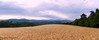 Panorama ardèchois. (Pascal Rey Photographies) Tags: paysages paysage ruralité landschaft landscapes landscape blé wheat champ champêtre horizon nature ardèche photographiecontemporaine photos photographie photography photographierurale nikon d700 luminar sunset aruba abw